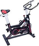 EVOLAND Bicicleta Estática para Interiores, Bicicleta Estática Profesional, Pantalla LCD, Spinning...